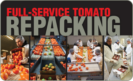 Full Service Tomato repacking